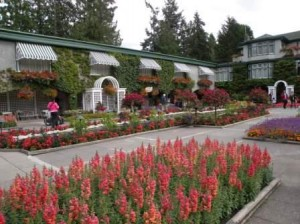 The Butchart Garden