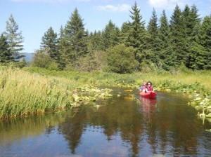 Golden Dream River の川下り、あまり漕が無くて良いので楽ちん