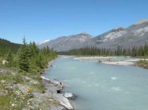 氷河から流れ出す水は灰色
