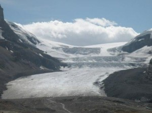 Colombia Icefield - 氷上バスで途中迄登れます