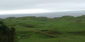 20130612-広大な牧草地-Web