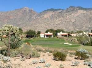 1125-01-La Paloma-Ridge No.7